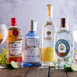 New gin selection