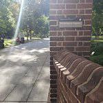 Bild från Washington Square Park