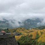 Rice terraces in Longsheng