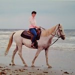 Photo of Horses On The Beach: Corpus Christi