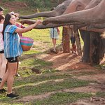 Bilde fra Authentic Thai Tours
