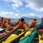 Photo of Kingfisher Wilderness Adventures - Orca Waters Kayak Day Trips