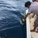 Foto de Omar's sportfishing