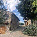 תמונה של Tuscany Tour Time