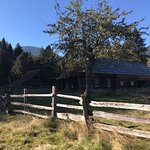 Bild från Olympic National Park and Forest Lake Quinault Tours