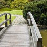 羅傑·威廉姆斯公園照片
