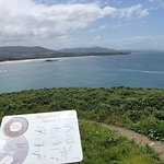 Foto di Coffs Harbour Muttonbird Island