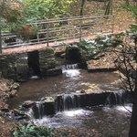 Foto van Harmby Waterfall