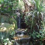 下暢遊聖淘沙自然探索中心照片