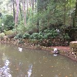 Photo of Ancient Duck Houses at Park of Pena