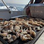 Fotografia de Cruzeiros Da Oura Fishing Charters