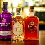 Some of our gins