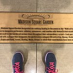 Foto de Madison Square Garden All Access Tour