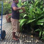 Coconut demonstration