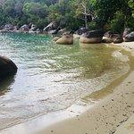 Beach - East Bedarra Island Retreat Photo