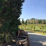 ภาพถ่ายของ Chianti Wine Tour