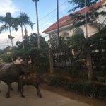 Landscape - Phong Nha Farmstay Photo
