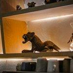 Espacios Jaguar Yuú