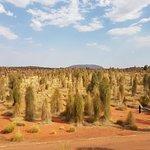 Landscape - Longitude 131 Photo