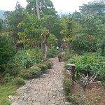Landscape - 98 Acres Resort and Spa Photo