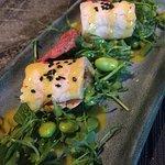 fushio dish