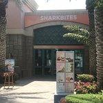 Foto de Shark Bites