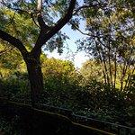 Photo de El Parque de Sant Marti