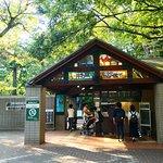 井の頭自然文化園(動物園)。小学生以下は無料。65歳以上は200円、一般は400円と安いです。