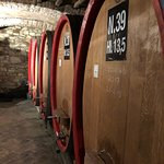 Tuscan Wine Tours from Siena by Grape Toursの写真