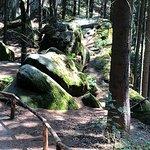 Photo de Elbe Sandstone Mountains