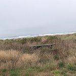 Foto Pacific Beach State Park