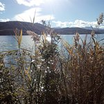 Photo de Lake Worthersee