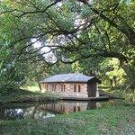 صورة فوتوغرافية لـ Villa e Parco Revedin Bolasco