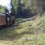 Photo of Harz Steam Railway