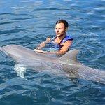 Photo of Dolphin Discovery Akumal