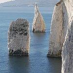 Zdjęcie Old Harry Rocks