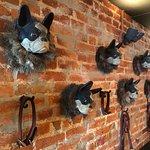 White Dog Cafeの写真
