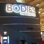 Foto di Bodies The Exhibition