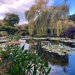 Фотография The Clos Normand - Fondation Claude Monet