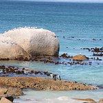 Photo de Foxy Beach