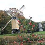 Foto van Nederlands Openluchtmuseum