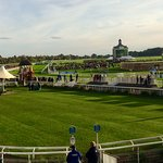 Parade Ring with course beyond
