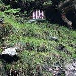 ภาพถ่ายของ Glenevin Waterfall