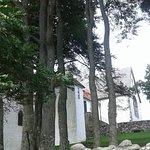 Небольшая монастырская старая роща с очень высокими буковыми деревьями