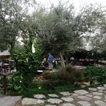 Photo of Aroma Cafe & Secret Garden