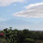 Point de vue sur le Kilimandjaro