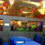 Mandarin Restaurant照片