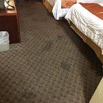 Howard Johnson Hotel & Suites by Wyndham Tacoma Photo