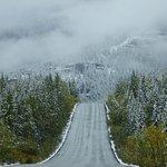 Billede af Icefields Parkway