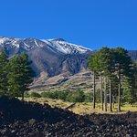 Escursioni sull'Etna Etnatao Ecoturismo